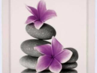 Schilderij Paarse Bloemen op Stenen A