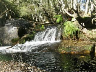Buitenland Portugal watermolen op 3 ha grond