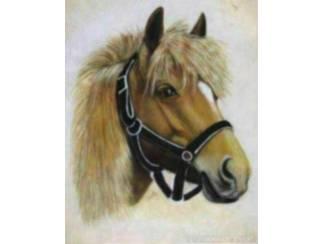 Paarden Poster Paard