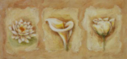 Bloemen Schilderijen Klaproos Aronskelk