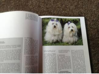 Boek van honden ,lieve en schattige huisdieren ,mensenvriend