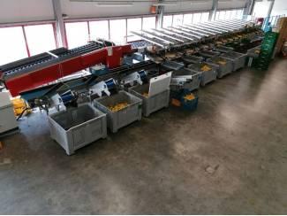 Aweta gmc 4-16 paprika sorteerlijn incl. palletiseerder en binder