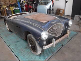 """Austin Healey 100/4 1954 """"to restore"""""""