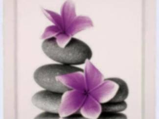 Paarse Bloemen op Stenen Schilderij A