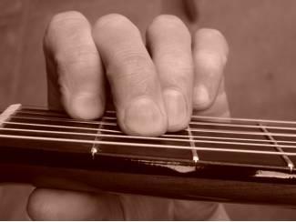 Snaarinstrumenten | Gitaren | Akoestisch Gitaar leren spelen online.