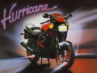 Posters Motor Hurricane Ninja Harley Davidson Suzuki, Honda