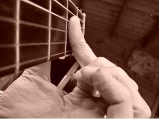Snaarinstrumenten | Gitaren | Akoestisch Online gitaarles, deskundige begeleiding