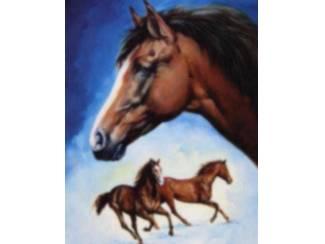 Posters Paarden