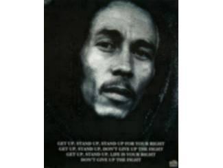 Overige Muziek en Instrumenten Posters Bob Marley Verschillende