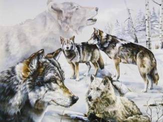 Poster Wolf Wolven in de Sneeuw
