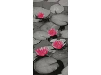 GlossySchilderij Waterlelie Lelie Bloemen Grijs Roze 2 luik