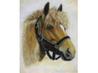Poster Paarden Paard