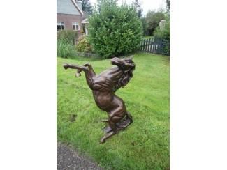 Paard steigerend brons beeld nieuw