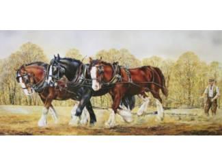 Schilderijen Werk Paarden op Boerderij