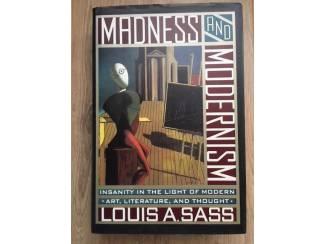 Madness and modernism - Louis A. Stass