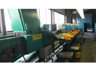 Paprika sorteerder greefa mse 2000 2-9