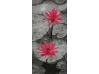 Schilderij Waterlelie Lelie Bloemen Grijs Roze 2 Luik Glossy