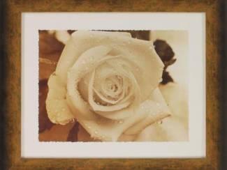 Poster Zee, Strand, Vazen met Bloemen en Roos