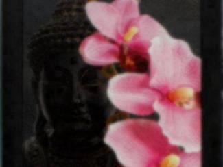 Schilderij Zwarte Boedha Orchidee Boeddha Buddha Budha Buda