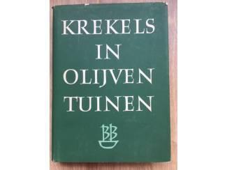 Krekels in olijventuinen