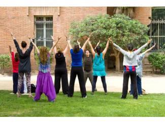 Eenvoudig leren mediteren met Falun Dafa, in Roosendaal