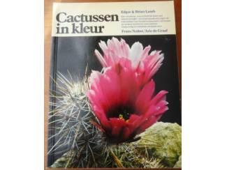 Cactussen in kleur- Edgar & Brian Lamb