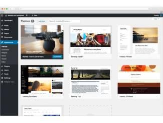 Websites en Domeinnamen Bent u op zoek naar een Website of webshop  voor u bedrijf.