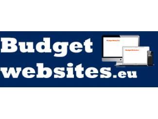 Professionele website online binnen één dag voor maar ?99?