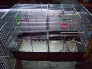 Vogels | Toebehoren Kooi/Broedkooien kan in tweeën worden gedeeld