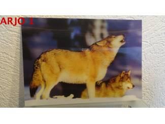 Drie D poster - wolven print nr 106 - GEEN VERZENDKOSTEN