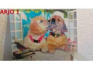 Drie D poster - Honden nr 159 - GEEN VERZENDKOSTEN