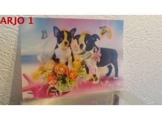 Drie D poster - Honden nr 163 - GEEN VERZENDKOSTEN