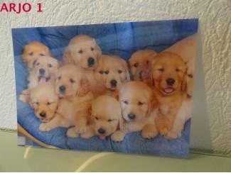 Drie D poster - Puppies nr 140 - GEEN VERZENDKOSTEN