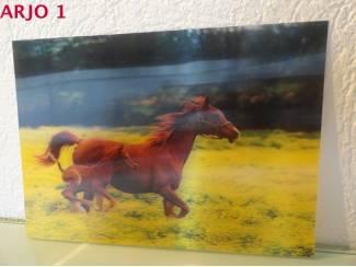 Drie D poster - Adelaar print nr 130 - GEEN VERZENDKOSTEN