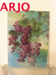 Drie D poster - Druiven print nr 11 - GEEN VERZENDKOSTEN