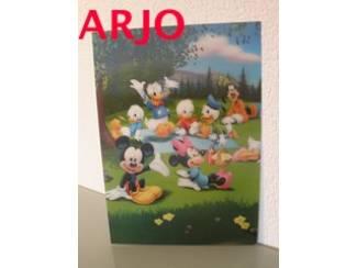 Drie D poster - Disney fam print nr 8 - GEEN VERZENDKOSTEN