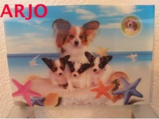Drie D poster - Honden- nr 58 - GEEN VERZENDKOSTEN
