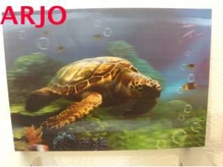 Drie D poster - Schildpad  nr 65 - GEEN VERZENDKOSTEN