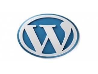 Vanaf ?99,99 ex btw goedkoop een WordPress website laten maken