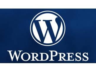 Vanaf ?250,00 ex btw goedkoop een WordPress webwinkel laten maken