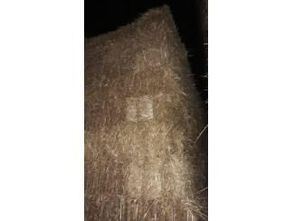 Paarden | Toebehoren Tarwe stro in kleine pakken.