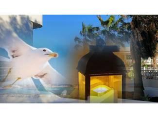 Fuerteventura Apartment Ocean Breeze Caleta de Fuste