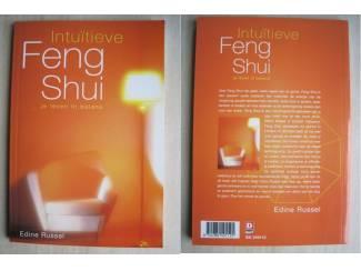 231 - Intuïtieve Feng Shui - Edine Russel