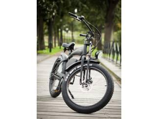 Elektrische fiets Fatwheel EBike vintage cruiser fatbike 20Ah